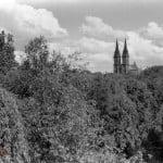 Park im. Sienkiewicza