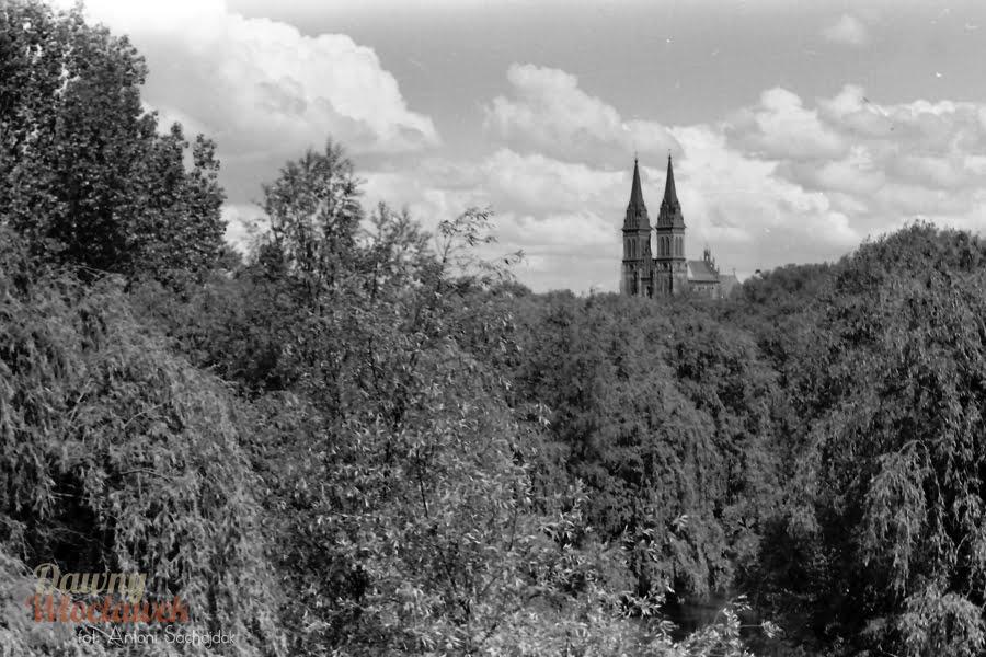 Park im. Henryka Sienkiewicza we Włocławku - widok na Katedrę